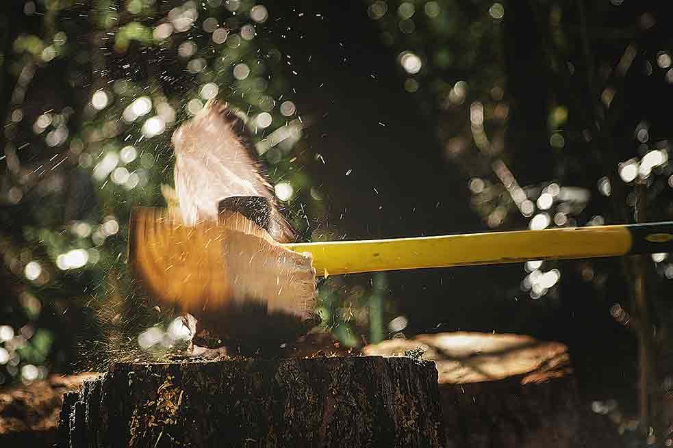 responsible logs