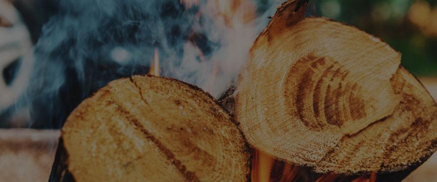 log fire image